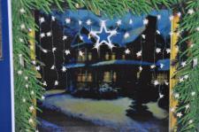 LED Sternenvorhang 126x90cm tageslicht-weiß Weihnachtsdeko Lichtervorhang Lichterkette