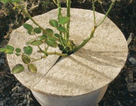 GREEN TOWER GT Kokos-Mulchscheiben Kokos-mulch-scheibe 45cm