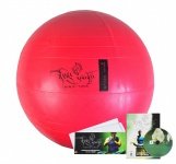 DVD Ninje Yoga Rückenschule 3-tlg.mit Ralf Bauer Handbuch Sitzball Gymnastikball