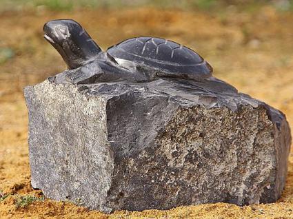Naturstein Schildkröte als Relief, handarbeit, teilpoliert