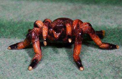 Tarantel, Figur zur Dekoration, mit Öse zum Aufhängen Spinne Spinnen Vogelspinne - Vorschau 3