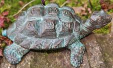 Bronzefigur Wasserspeier Schildkröte aus Bronze für Garten & Teich