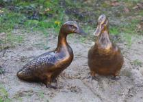 Bronzefigur Entenset, Zwei Enten, Ente, Tierfigur aus Bronze, Bronzevogel Vögel Vogel