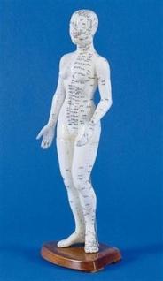 Akupunkturfigur