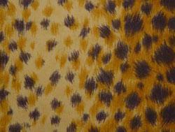 Meterware Baumwolle Tiger Breite 150 cm
