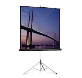 Stativleinwand WS-P Stativ PictureKing 1:1 172x172cm