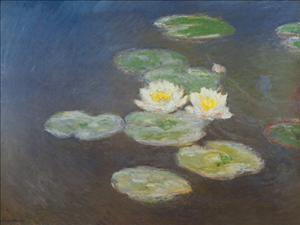 Monet - Nympheas (95cm x75cm)