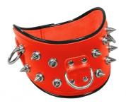 Ledapol - Scharfes Echt Leder Halsband mit Nieten