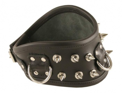 Ledapol - Luxus Leder Halsband mit Nieten