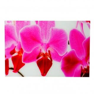 Glasbild T116, Wandbild Poster Motiv, 40x60cm ~ Orchidee