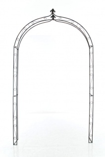 Rosenbogen CP379, Eisen ~ bronze