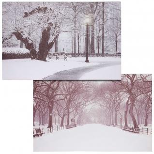 2x LED-Bild Leinwandbild Leuchtbild Wandbild 40x60cm, Timer ~ Winter + flackernd