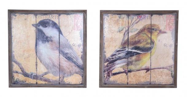 2x Wandbild H04, Wanddekoration Wanddeko, Shabby-Look Vintage, Vögel, 56x56x3cm