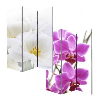 Foto-Paravent Paravent Raumteiler ~ Orchidee
