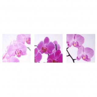 Leinwandbild T376, Wandbild, 3-teilig 150x50cm ~ Orchidee