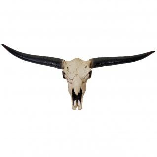 Deko Schädel 132cm HWC-A14, Polyresin Stier Bulle Longhorn Kopf Trophäe, In-/Outdoor natur