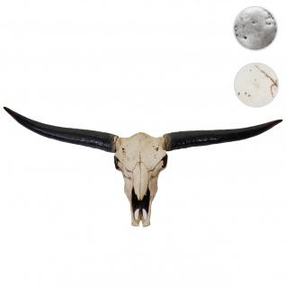 Deko Schädel 132cm HWC-A14, Polyresin Stier Bulle Longhorn Kopf Trophäe, In-/Outdoor ~ naturfarben