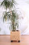 2x Blumenkübel Blumentopf aus Wasserhyazinthe