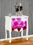 Kommode Marne Beistelltisch Nachttisch, 70x60x36cm Orchidee