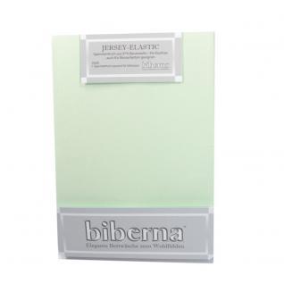 Biberna 77866 Jersey Elastic Spannbetttuch Mintgrün 180x200 200x220