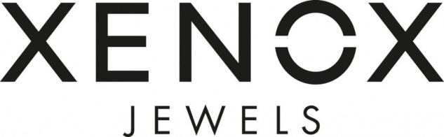 XENOX XS7280 Damen Ring Silver Circle Silber weiß 54 (17.2) - Vorschau 3