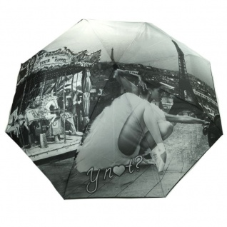 Y Not 55577 Easymatic Light City Paris Grau Taschenschirm