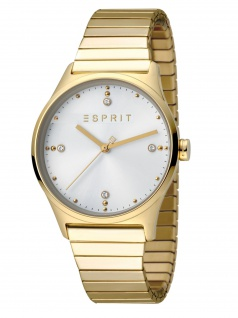 Esprit ES1L032E0075 VinRose Silver Gold Polish Damenuhr Edelstahl Gold