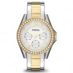 Fossil ES3204 RILEY Uhr Damenuhr Edelstahl Datum bicolor