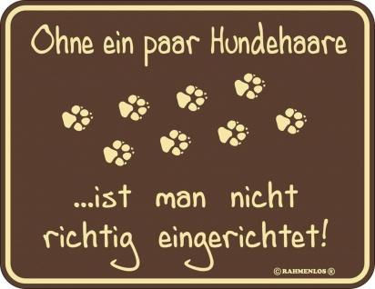 Humor Kühlschrankmagnet Ohne Hundehaare Kühlschrank Magnet Fun Schild Metall