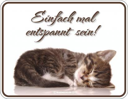 Katzen Fun Schilder - Einfach mal entspannt sein