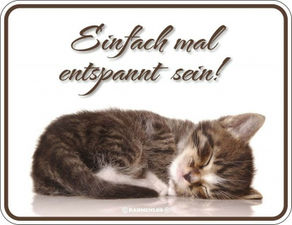 Humor Kühlschrankmagnet Katzen haben Personal Kühlschrank Magnet Schild Metall