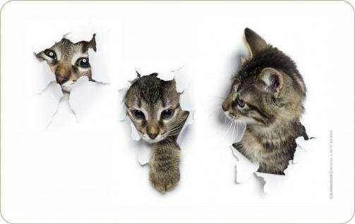 Frühstücksbrett Schneide-Brettchen - Katzenkinder Katzen-Babys - Geschenk Brett