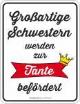 Geburtstag Blechschild Großartige Schwester zur Tante Schild geprägt bedruckt