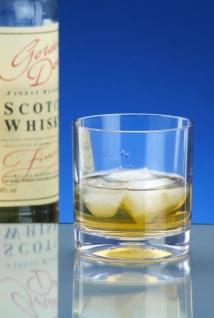 10er Set Whiskey-Glas SAN aus Kunststoff mit extra dicken Boden kaum von Glas zu unterscheiden - Vorschau 3