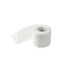 Toilettenpapier 2-lagig 250 Blatt in hochweiß 8 x 8 Rollen/Pack