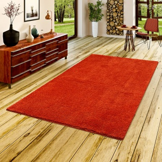 Hochflor Shaggy Teppich Palace Rost