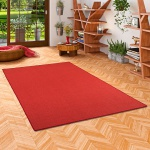 Sisal Natur Teppich Astra Rot