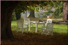 5-tlg. Dining Set Sitzgruppe 5 Gartensessel Gartentisch Robinie Massivholz 2 Farben WH-Fiore-Set-1