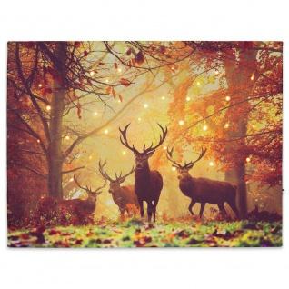 Wandbild mit LED Kunstdruck mit Beleuchtung Hirsch 30x40 cm Timer