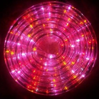 LED Lichtschlauch 8m 160er bunt + 16 weiss blinkende Blachere JNLF80