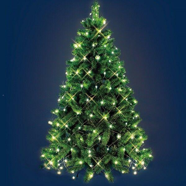 led weihnachtsbaum lichternetz 195er warmwei kabel gr n au en lotti 17740 xmas kaufen bei. Black Bedroom Furniture Sets. Home Design Ideas