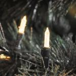 LED Mini-Lichterkette 40er warmweiß / grün aussen Konstsmide 6004-100