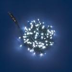 PLB Funktions-System LED Lichterkette 10m kaltweiß-grün außen 31456 xmas