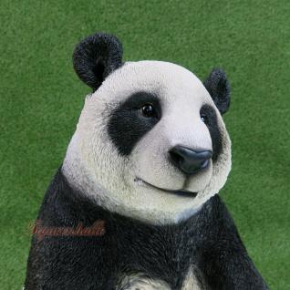 Pandabär Figur Statue Skulptur Deko Gartenfigur lebensecht Deko Panda Zoo Bär - Vorschau 2