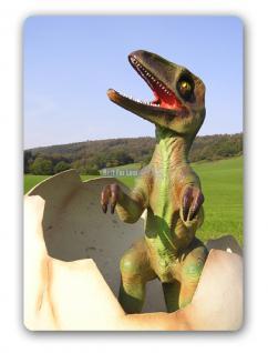 Tyrannosaurus Rex Baby im Ei Figur Statue Dino - Vorschau 5