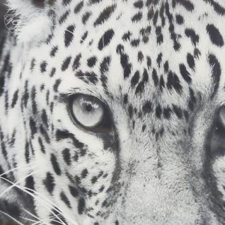 Wandbild Fotodruck Leopard Schwarz weiß Rahmen Holz mit Alu - Vorschau 2