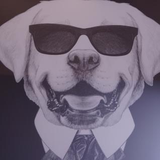 Hund mit Sonnenbrille Wandbild Spiegelrahmen Fotografie - Vorschau 2