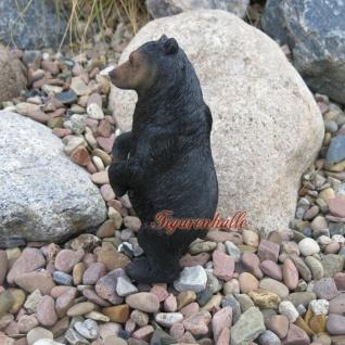 Grizzly Bär Braunbär Figur Statue Skulptur Deko - Vorschau 3