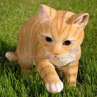 Grau Tiger beige Katze gestromt als Figur Kaufen
