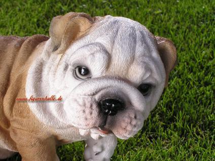 Englische Bulldogge als Dekofigur Tierfigur Figur